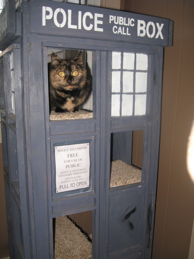 Rock'n the TARDIS