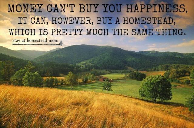money can't buy you happiness but it can by you a homestead
