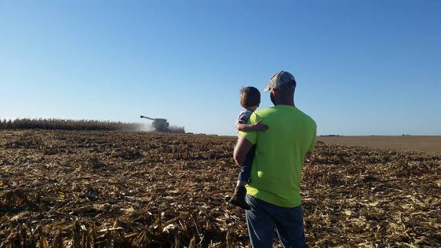 john-and-owen-watching-grandpa-don-pick-corn-2016
